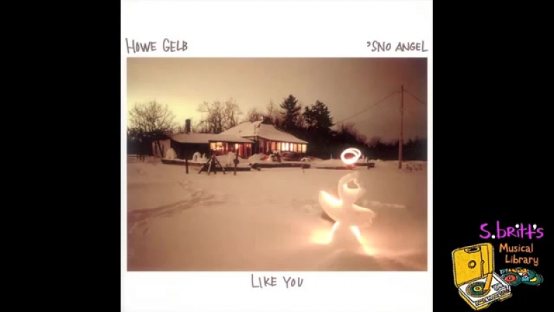 Howe Gelb But I Did Not