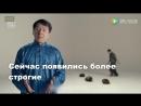 Джеки Чан призвал остановить истребление панголинов
