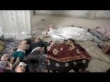 Красивый Нашид (syria)