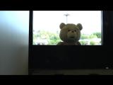 BAIT x TED2 x Reebok Instapump Fury TRAILER krossmarket