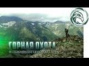 ГОРНАЯ ОХОТА НА СРЕДНЕ КАВКАЗСКОГО И КУБАНСКОГО ТУРА Mid Caucasian Tur hunting