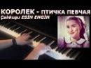 Королек птичка певчая фортепиано Çalıkuşu