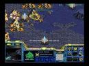 StarCraft Brood War [FPVOD] 31 01 2009 White Ra Стервятники