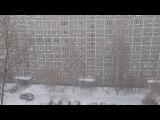 10.12.2016 Снег кружится / Кирилл и Кот /