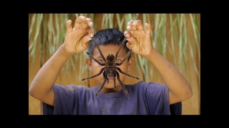 Монстры джунглей Амазонии. Документальный фильм.