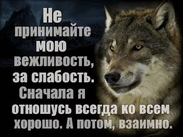 Фото №456253657 со страницы Абдулкадира Исакова