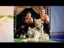 Эдгард Запашный Шансов убедить тигра в том, что я хороший дрессировщик, у меня нет