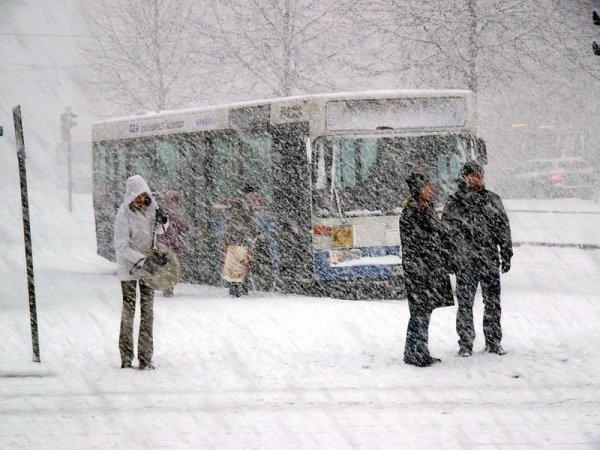В Ростовской области ожидается сильный снег, метель, гололед и порывистый ветер до 24 м/с