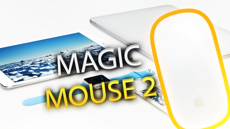 Magic Mouse 2 в семье не без урода
