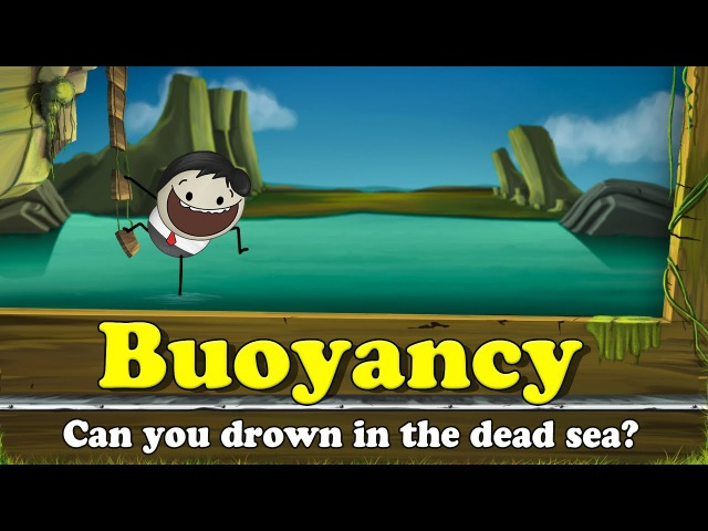 Buoyancy - Can you drown in the dead sea? | It's AumSum Time