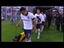 Футбольная команда Colo Colo и ее талисманы