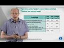 Курс лекций «Управление личными финансами». Лекция 11 Демографическая ситуация в мире и в России