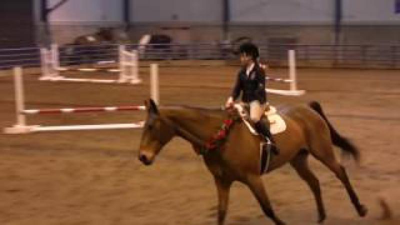 Ребенок без руки и лошадь без уздечки