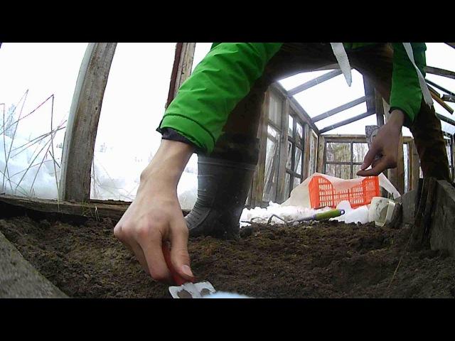 Добрый день! 21 МАЯ мы ездили на дачу и посадили кабачки, редис новым способом. Приятного просмотра!