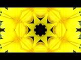 Tchaikovsky Waltz of the Flowers UHD 4k Kaleidoscope