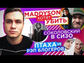 Чеченцы хотят УБИТЬ Maddyson, ВОЙНА: Птаха vs. Блогеры, Соколовский в тюрьме