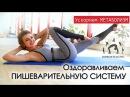 Оздоравливаем ПИЩЕВАРИТЕЛЬНУЮ СИСТЕМУ Ускоряем МЕТАБОЛИЗМ Избавляемся от лишнего веса