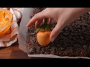 Carrot Patch Brownies | Delish