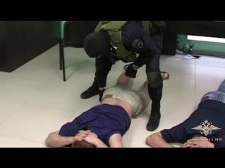 Видео задержания майнеров в Костромской области