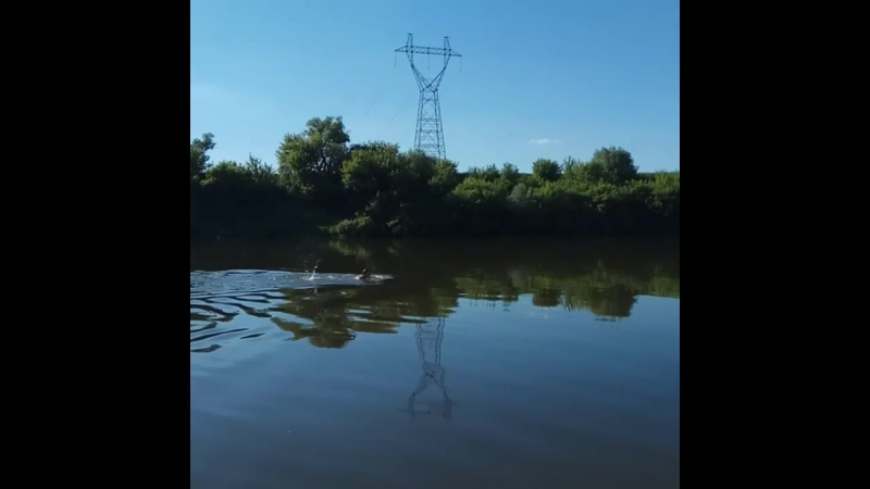 Река Дон против течения