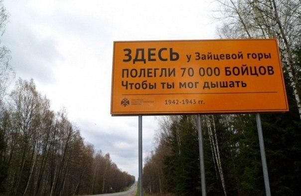 В России показались дорожные знаки, рассказывающие о