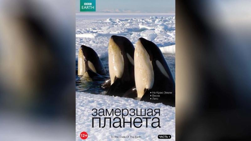 BBC Замерзшая планета (2011) | Frozen Planet