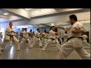 Kazuo Miyoshi Kyokushin Seminar New York June 7th 2014