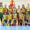 Баскетбольная школа «Старый соболь»