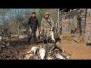Охота на гусей в Якутии! Промысел якутских таежников!