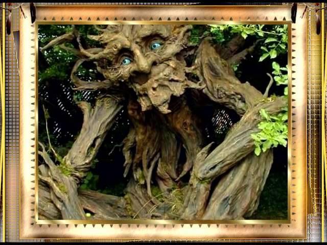 Приколы на Ютубе – Причуды природы – Необычная природа – Очень смешно!