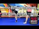 Три жестких техники для удара ногой в голову в Муай Тай ММА и БИ nhb tcnrb nt ybrb lkz elfhf yjujq d ujkjde d vefq nfq vvf b
