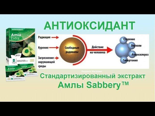 Антиоксидант! Стандартизированный экстракт Амлы Sabbery™ Дергачев Д.С. 09.08.2017