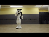 Rinn - The Great Divide (VelvetineSeven Lions Remix) Sergal Fursuit Freestyle (20.04.15)