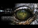 Секретные территории  Рептилии среди нас   рептилоиды, инопланетные рептилии, инопланетяне