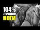 104% Лучшая Программа Тренировок Для Ног и Задницы 104% kexifz ghjuhfvvf nhtybhjdjr lkz yju b pflybws
