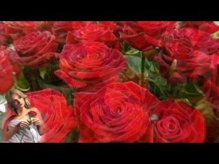 Банд Одесса Букет из роз