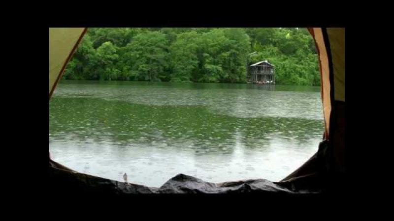 Шум дождя в палатке успокаивает и умиротворяет видео HD Nature sounds sound of rain relax » Freewka.com - Смотреть онлайн в хорощем качестве