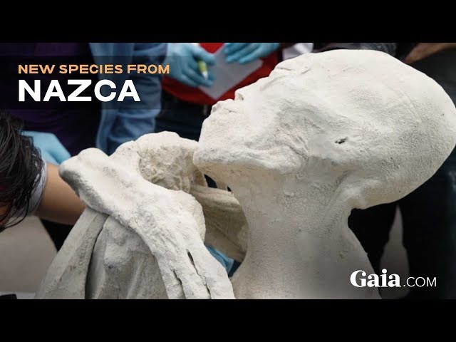 SPECIAL REPORT UNEARTHING NAZCA | Only on Gaia.com!