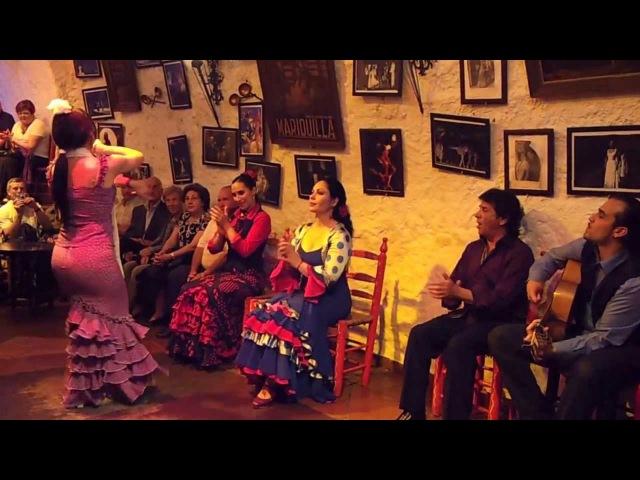 Flamenco Dance by Spanish Gypsies Part 2