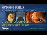 Стесняюсь своей веры о. Андрей Ткачев