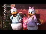 В шанхайском Диснейленде отмечают Новый год танцами дракона и фонарями в виде Микки Мауса