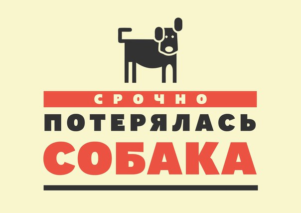Открытка пропал щенок, анимации прозрачном фоне