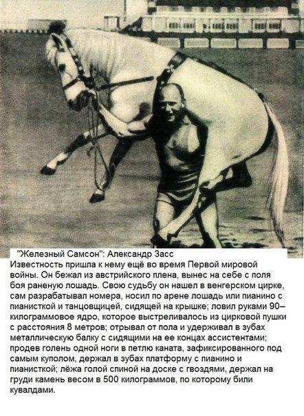 Александр Засс