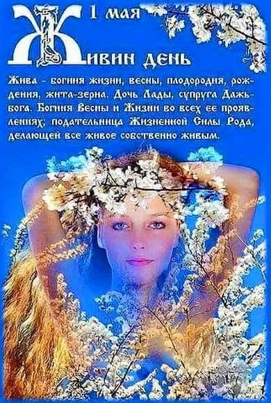 https://pp.userapi.com/c837735/v837735869/35052/yx397dVI9a4.jpg