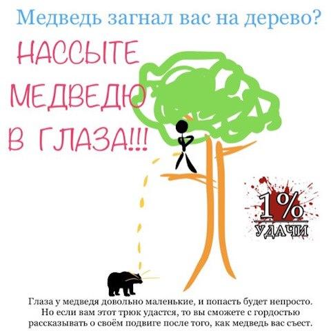 Фото №456239650 со страницы Николая Кропачева