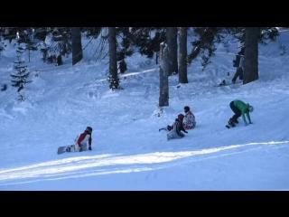 Миграция личинок сноубордистов в сноубординге