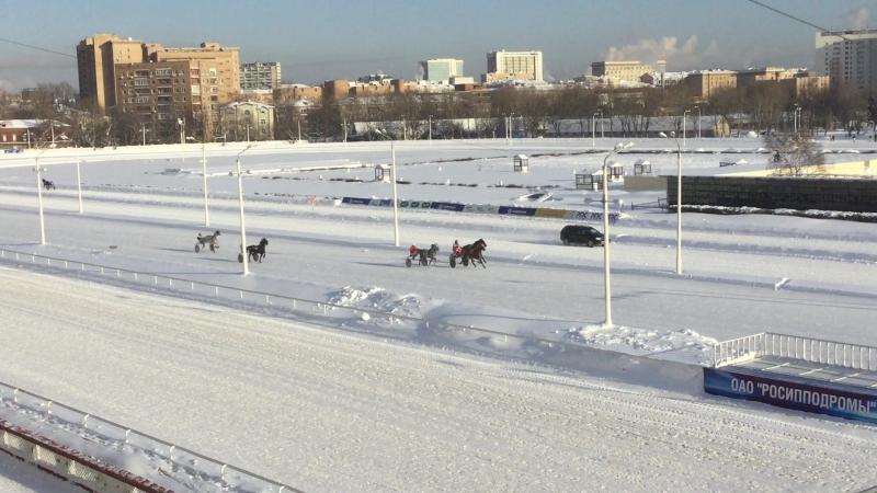 Центральный Моссковский Ипподром финиш