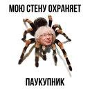 Андрей Шленчак фото #8
