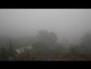 Туманное раннее утро 04.09.17