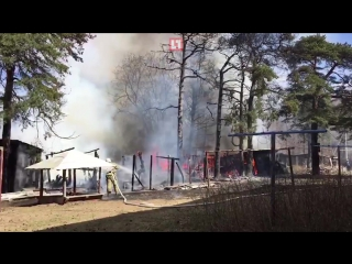 В Ломоносовском районе тушили постройки рядом с конюшней